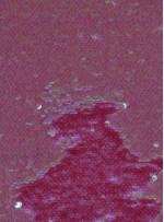 Balık Sırtı Çift Taraflı Payetli Mermaid Kumaş - Fuşya - K9381