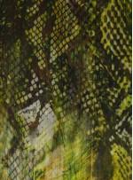 Abiye Elbiselik Desenli Yeşil İpek Empirme Şifon Kumaş - G053
